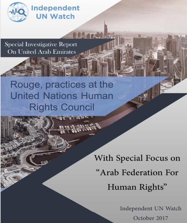Investigative Report: UAE Human Rights Network Lobby